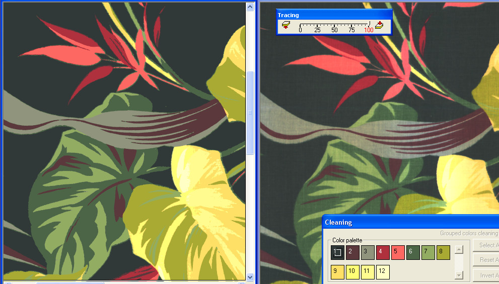 Screenshot of example of Color Reduction and Cleaning Pro