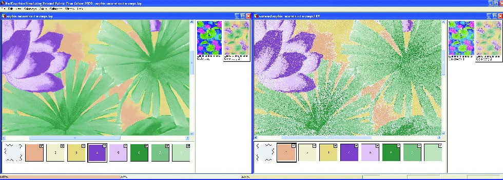 screenshot of Dual Screen View Showing Results of True Color or Simulation Raster Reconstruct
